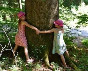 copac-imbratisare