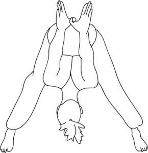 plamani-intestin gros