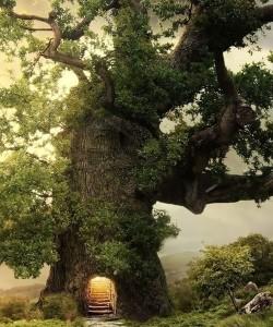 copac-magic