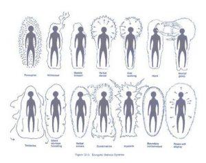 oameni-energie